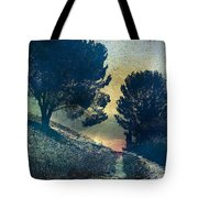 Somber Passage Tote Bag