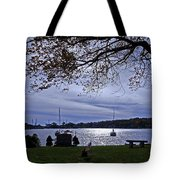 Somber View Tote Bag