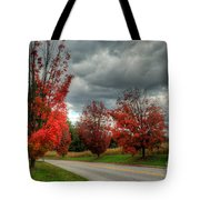 Some Fall Colors Tote Bag