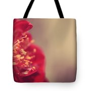 Some Light Into Your Darkness Tote Bag by Laurie Search