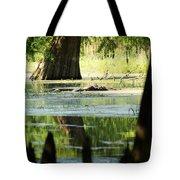 Some Turtles At Radium Springs Creek Tote Bag