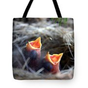 Somebody Feed Me Tote Bag