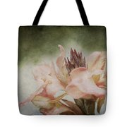 Somebody's Beauty Tote Bag