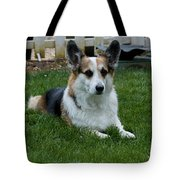 Something Has His Attention Tote Bag