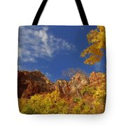 Somewhere Over The Mountains Tote Bag