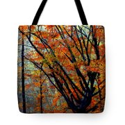 Song Of Autumn Tote Bag