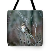 Songs Of Sparrows Tote Bag