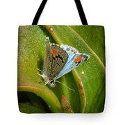 Sonoran Blue Tote Bag