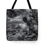 Sonoran Desert 15 Tote Bag