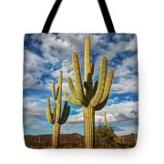 Sonoran Desert Beauty Tote Bag