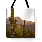 Sonoran Desert II Tote Bag by Robert Bales