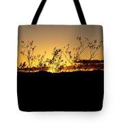 Sonoran Desert Sunset Tote Bag