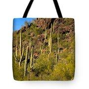 Sonoran Desert West Saguaro National Park Tote Bag