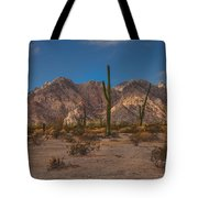 Sonoran  Tote Bag