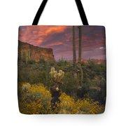 Sonoran Romance Tote Bag