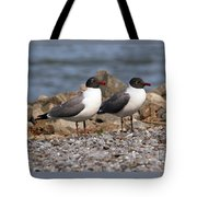 Mr. And Mrs. Laughing Gull  Tote Bag