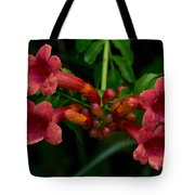 Sound The Trumpets Tote Bag