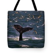 Sounding Humpback Tote Bag