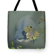 #south American Pacu Tote Bag