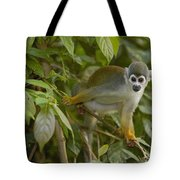 South American Squirrel Monkey Amazonia Tote Bag