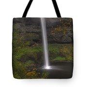 South Falls 1  Tote Bag