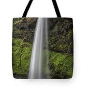 South Falls 2 Tote Bag