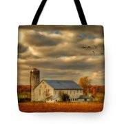 South For The Winter Tote Bag by Lois Bryan