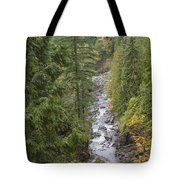 south fork Snoqualmie river Tote Bag