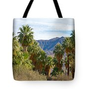 South Side View Of Andreas Canyon Trail In Indian Canyons-ca Tote Bag