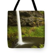 South Silver Falls 3 Tote Bag