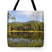Southeast Summer Tote Bag