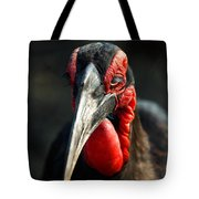 Southern Ground Hornbill Portrait Front View Tote Bag