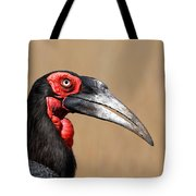 Southern Ground Hornbill Portrait Side View Tote Bag by Johan Swanepoel
