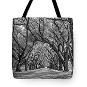 Southern Journey Bw Tote Bag