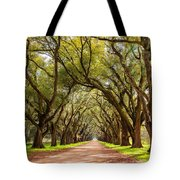 Southern Journey Paint Tote Bag