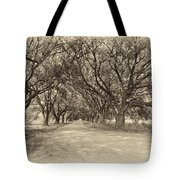Southern Journey Sepia Tote Bag