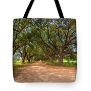 Southern Journey Tote Bag