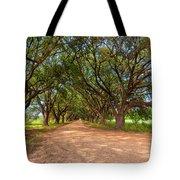 Southern Journey Tote Bag by Steve Harrington