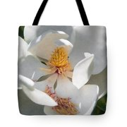 Southern Magnolia Blossom Tote Bag