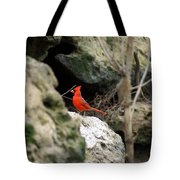 Southern Red Bird By The Flint River Tote Bag