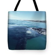 Southern Right Whale At Surface Tote Bag