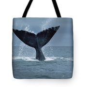 Southern Right Whale Fluke Argentina Tote Bag