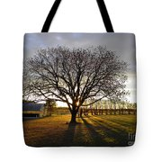 Southern Sunrise  Tote Bag