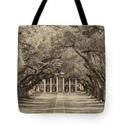 Southern Time Travel Sepia Tote Bag