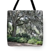 Southern Trees Tote Bag