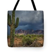Southwest Monsoon Skies  Tote Bag