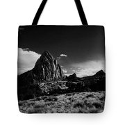 Southwestern Beauty In Black And White Tote Bag