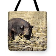Sow In The Field Tote Bag
