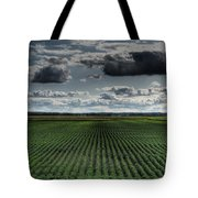Soy Beans Tote Bag
