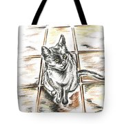 Spanish Cat Waiting Tote Bag